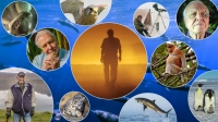 Massor av djur och natur i SVT i maj, Foto:   SVT/BBC/Nature Picture Library/Colossus Produ